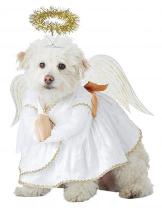 Heavenly Hound Dog Costume CCC-PET20153