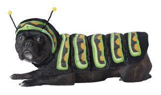 Caterpillar Dog Costume CCC-PET20158