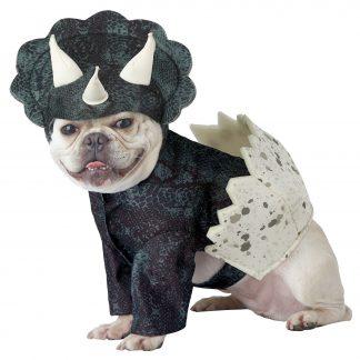 Dino Pup Dog Costume CCC-PET20159