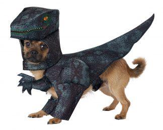 Pupasaurus Rex Dog Costume CCC-PET20169