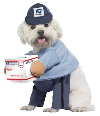 Us Mail Carrier Pup Costume