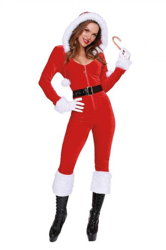 Ms Claus Costume