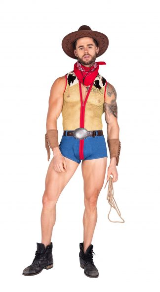 4pc Playful Sheriff Men's Costume